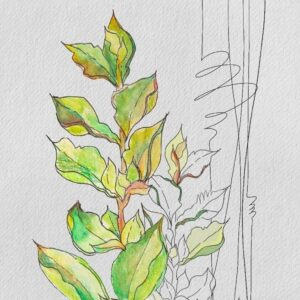 Watercolor painting of green leaves using Procreate app